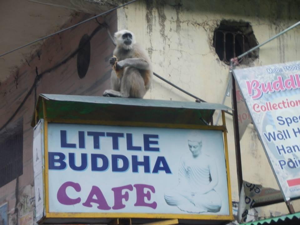 Little Buddha on the sign in Rishikesh